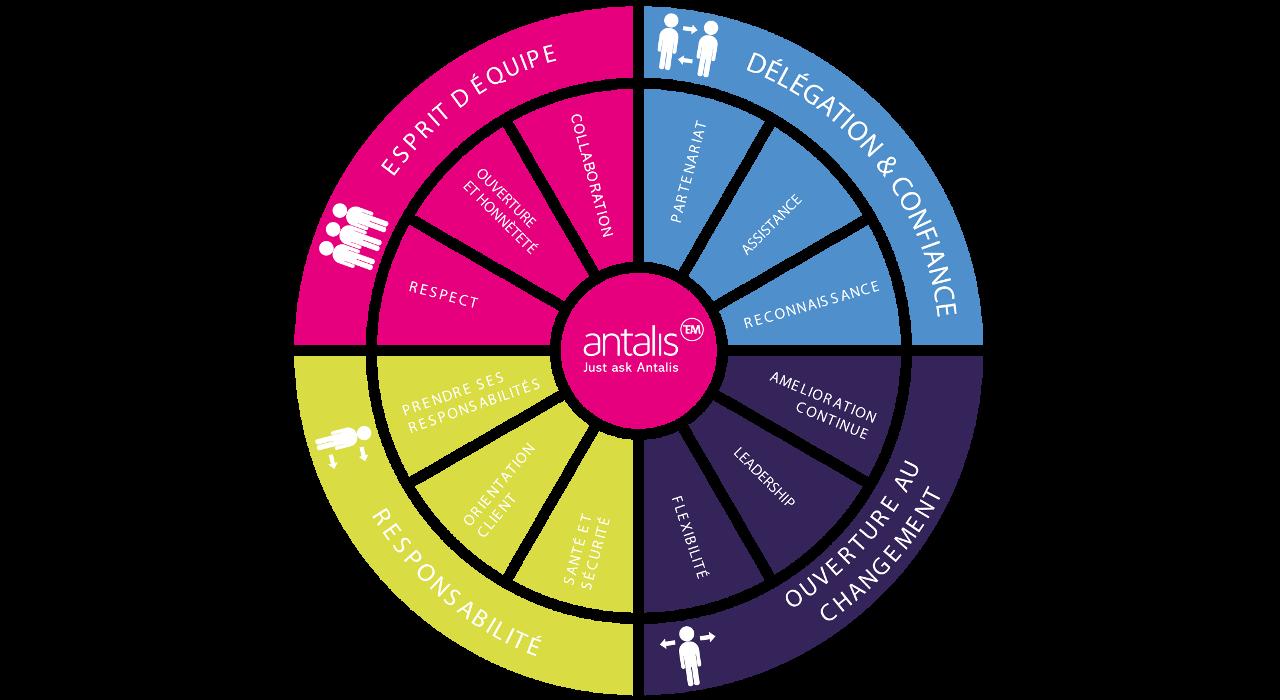 Image de la roue des valeurs d'Antalis